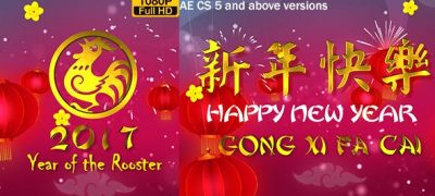 Chinese New Year Wish 2017