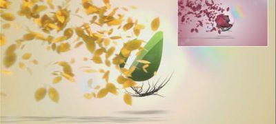 Flying Leaves Logo Reveal