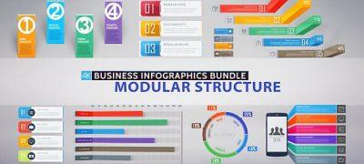 Business Infographics Bundle