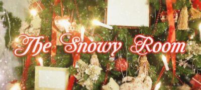 The Snowy Room