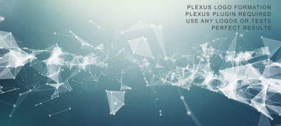Plexus Logo Formation