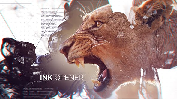 Ink Opener 21246153 Videohive